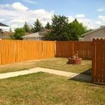 Fraser backyard