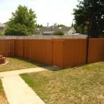 Fraser backyard 2